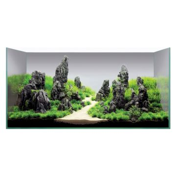 Hugo Kamishi Plant Display 6 - 100cm+ (ROCK PACK ONLY)