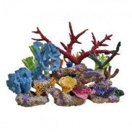 Living Color Aruba Kit with Loose Coral