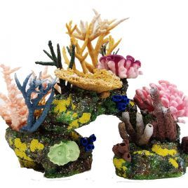 Living Color Dominica Kit with Loose Coral