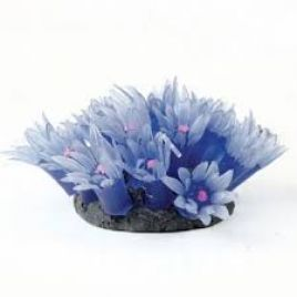 Natureform Artificial Star Polyp Colony Blue