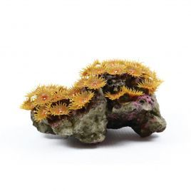 Natureform Artificial Coloured Polyp Colony Tan - Zoanthus
