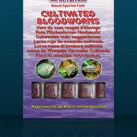 Ocean Nutrition Cultivated Bloodworms (100g)