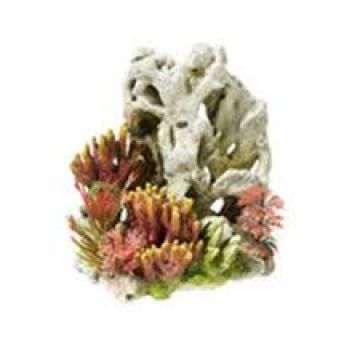 Classic Coral On Rocks 145mm
