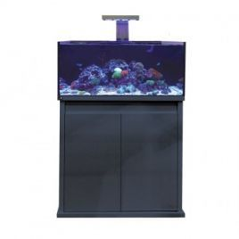 D-D Reef-Pro 900 - Gloss Anthracite