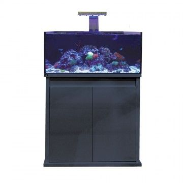 D-D Reef-Pro 900 Deluxe (2 x PrimeHD)  - Gloss Anthracite