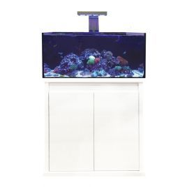 D-D Reef-Pro 900 Deluxe (2 x PrimeHD)  - Gloss White