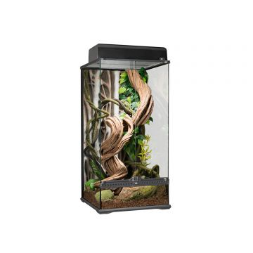 Exo Terra Glass Paludarium Small X-Tall - 45x45x90cm