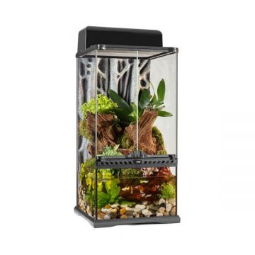 Exo Terra Glass Paludarium Mini X-Tall - 30x30x60cm