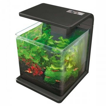 Superfish Wave 15 Black Aquarium