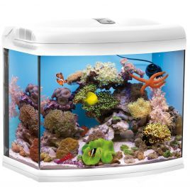 Aquael Reef Master White Aquarium (TANK ONLY)