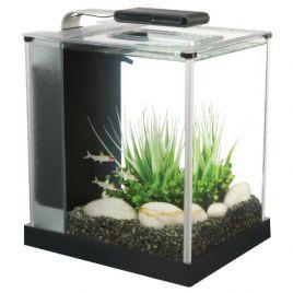 Fluval Spec Nano Aquariums Charterhouse Aquatics
