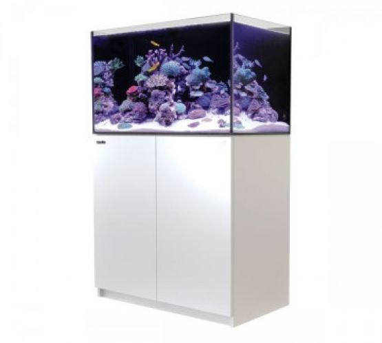 red sea reefer 250 aquarium white charterhouse aquatics