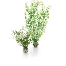 BiOrb Easy Plants -  Winter Flowers (Medium x 2)