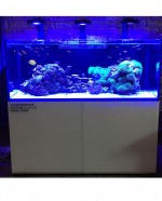 Charterhouse 5 x 2 x 2 Aquarium EX-WET DISPLAY